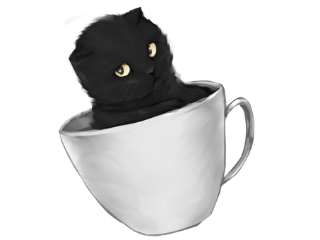 Black Cat in Coffee Cup