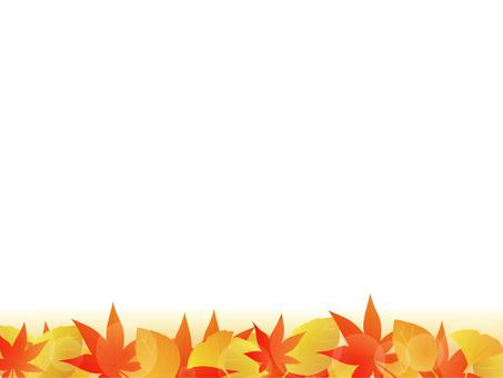 낙엽의 테두리