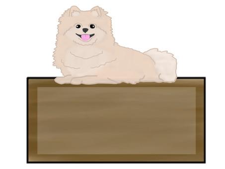 Pomeranian notes