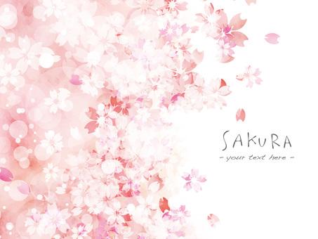 벚꽃 프레임 ver38