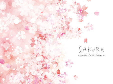 櫻花框架38