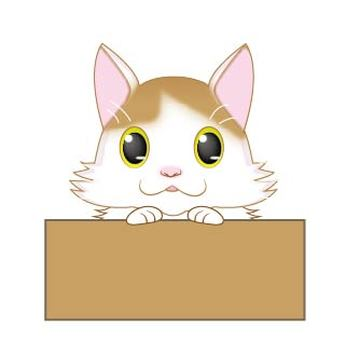 Cats in the box 2