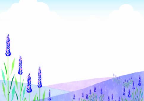 Lavender prairie
