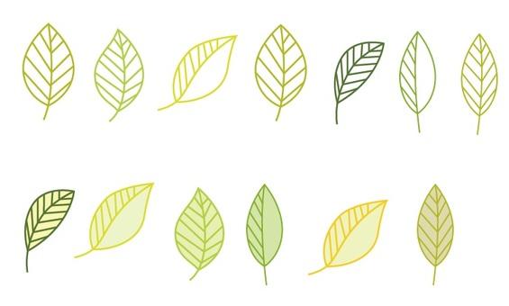 Leaves 7 List