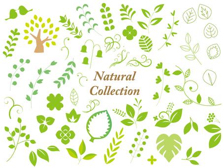 Natural material set