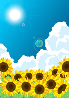 Sunflower and thunderhead background