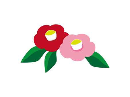 Red and pink camellia
