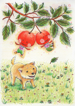 I found a cherry tree