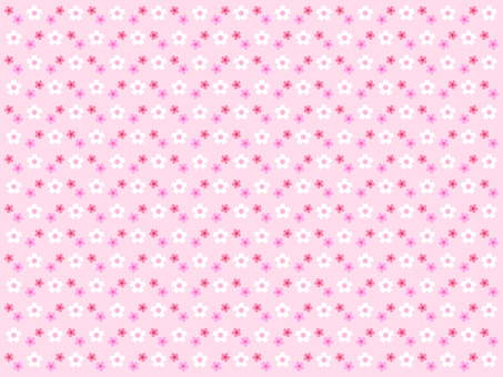 Cherry blossom pattern background (pink)