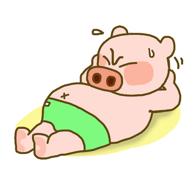 Pig who has difficulty lifting his abs