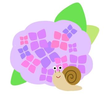 Snail and Hydrangea (purple)
