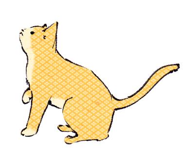 "Japanese Pattern Cat ""Handwritten Material"""