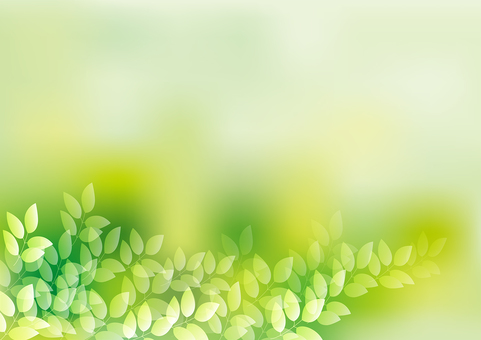 Fresh green 11