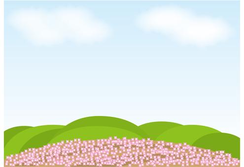 Wallpaper, Moss slope hill