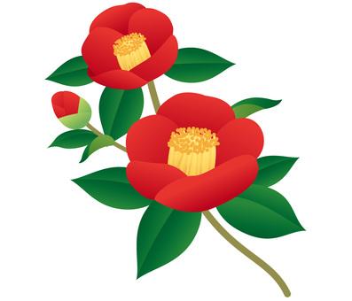 Camellia branch