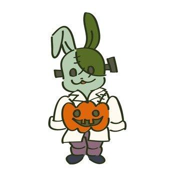 Masquerade rabbit