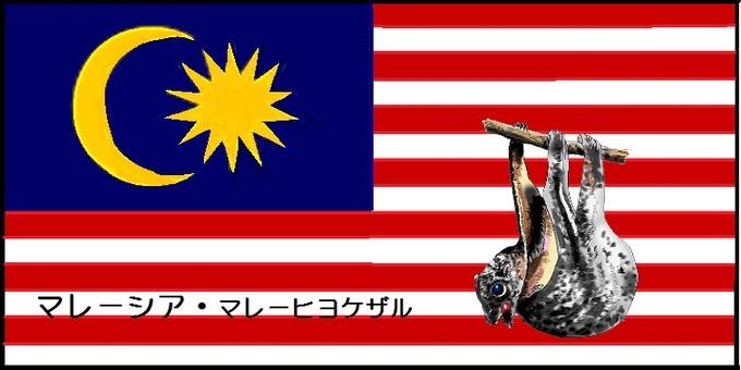 Flag of the world and rare animal 2