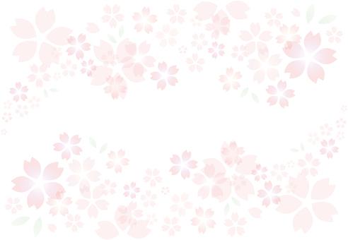 Sakura frame transparent