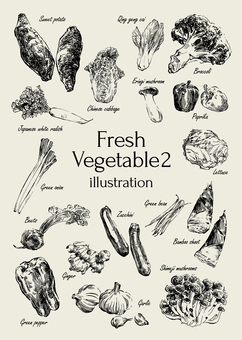 Fresh vegetable illustration 2