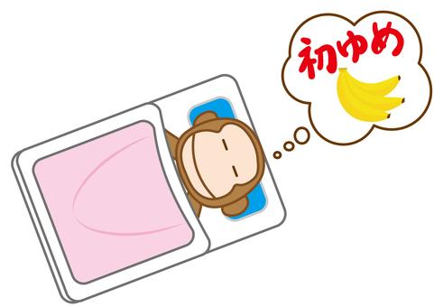Monkey's first dream