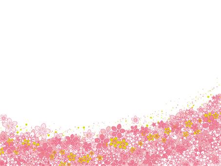 Sakura (cherry margin ant) small