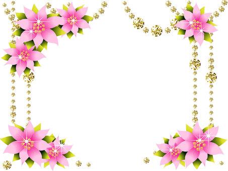 Princetia and diamond frame
