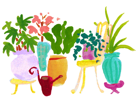 Interior _ houseplant 02