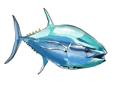 Fish tuna fish
