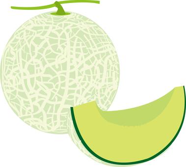 Food series fruit melon 2