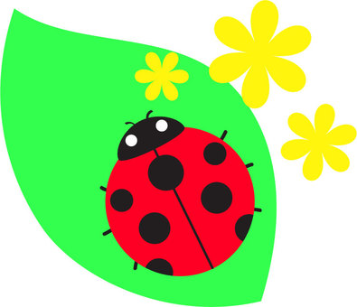 Ladybird _ Leaves