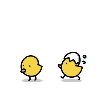 雞的父母:小雞