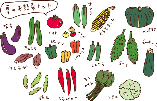 Summer vegetable set color