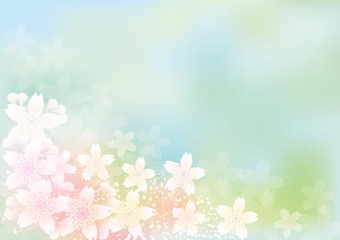 Blooming flowers 269