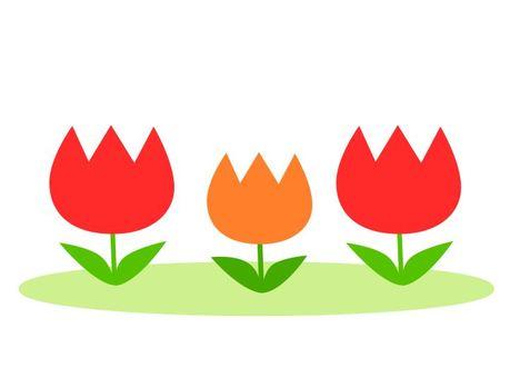 Tulip Red & Orange