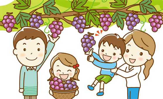 """Grape picking"" 03 up"