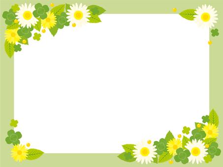 Midori's frame