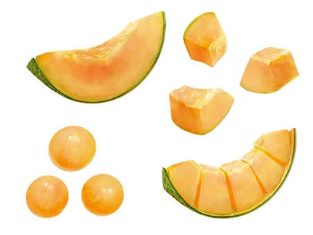 Illustration material of melon (red meat)