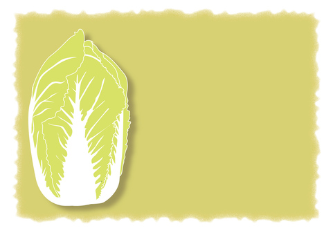 chinese-cabbage_ cabbage