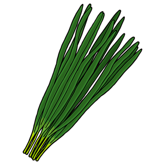 Nara / 韮 / Chinese chive