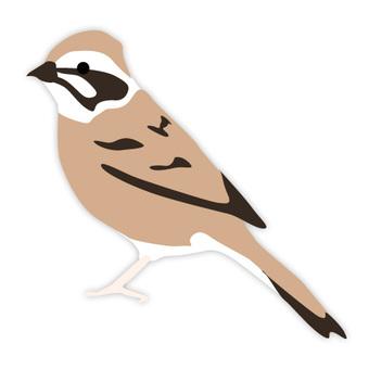 Hojirō (familiar bird)