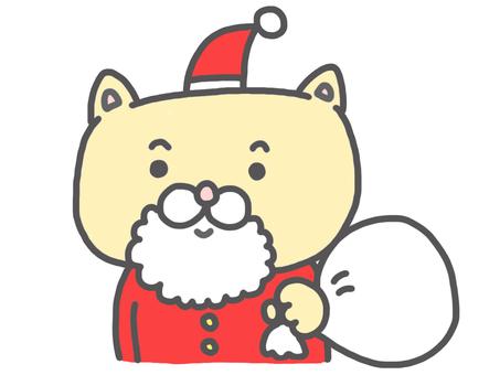 Cat Santa