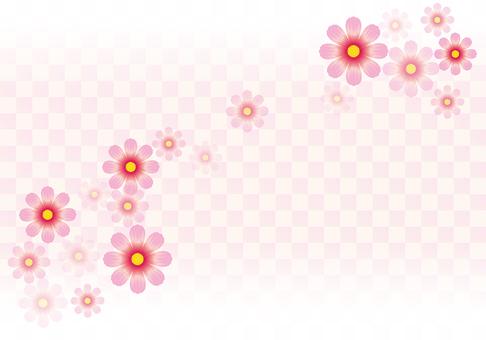 Flower pattern Cosmos 16