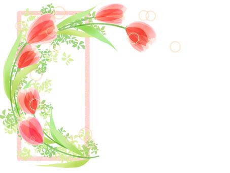 Tulip frame 5