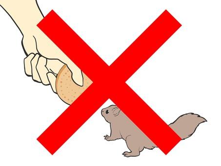 請不要給動物任何東西