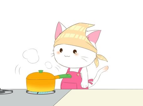 Water boiled cat