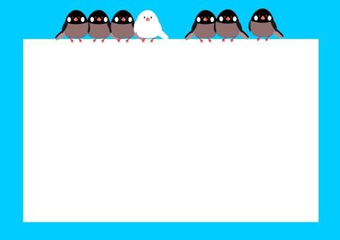 Sparrow frame