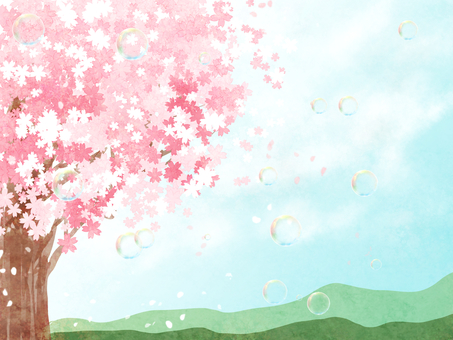 배경 소재 벚꽃 1