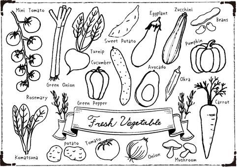 필기 야채 세트