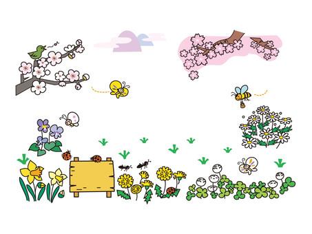 春天的領域
