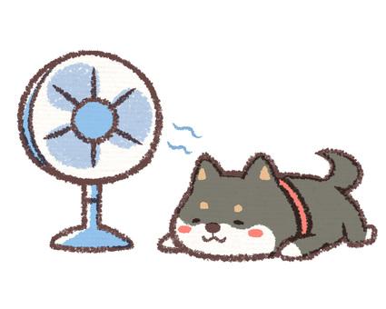 扇風機黒柴イヌ